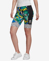 adidas Originals HER Studio London Cycling Shorts